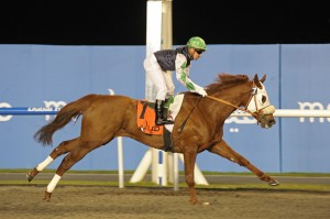 Ceedwell Wins the 2nd Race at Meydan by 2.5 Lengths