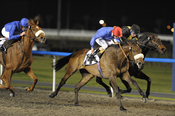 Rock N Roll Ransom Wins 2011 Evidenza Handicap at Meydan 2011 from Halicarnassus