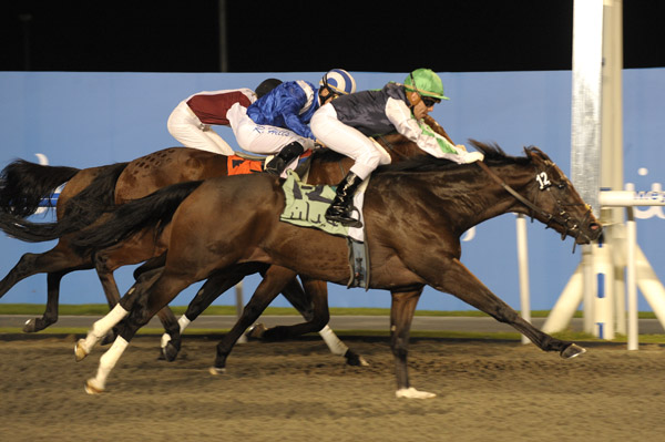 Strecker gets up narrowly in Meydan maiden