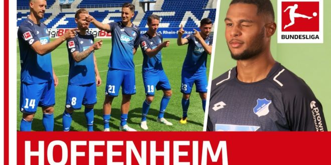 Lovely Gnabry – Hoffenheim's new star shines for Nagelsmann, Demirbay & Co.