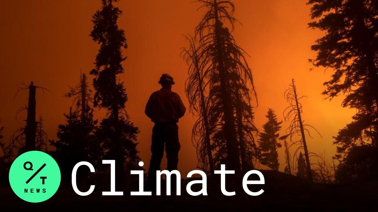 What Role Is Climate Change Playing in California's Historic Wildfires?