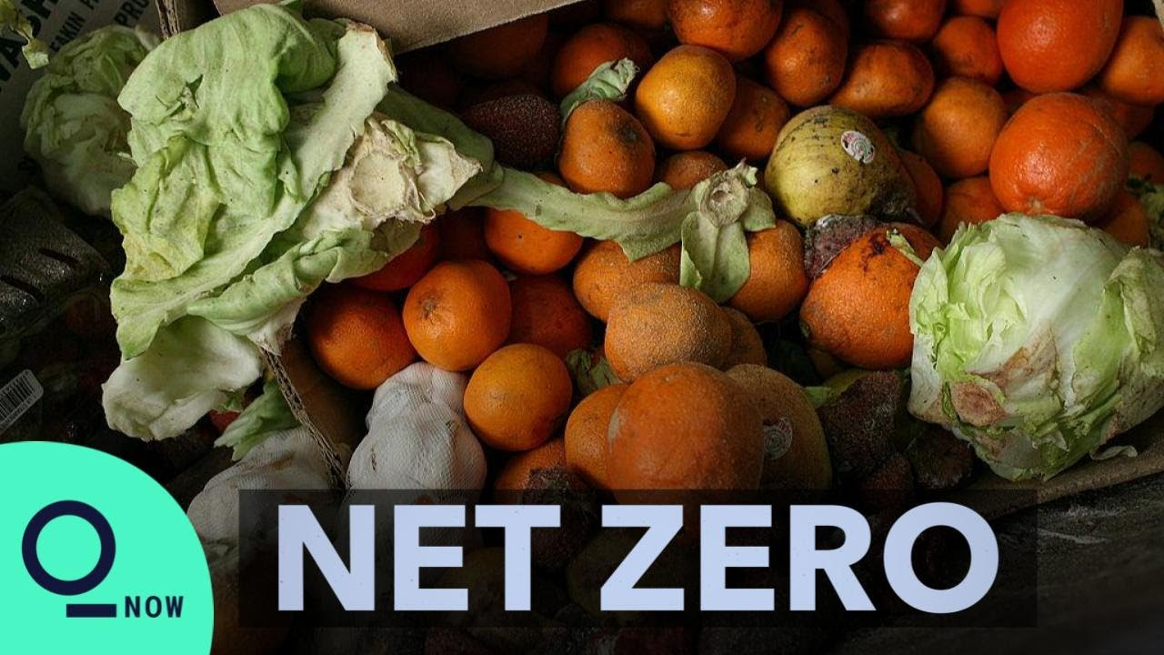 Food Waste Is a Major Climate Problem | Net Zero
